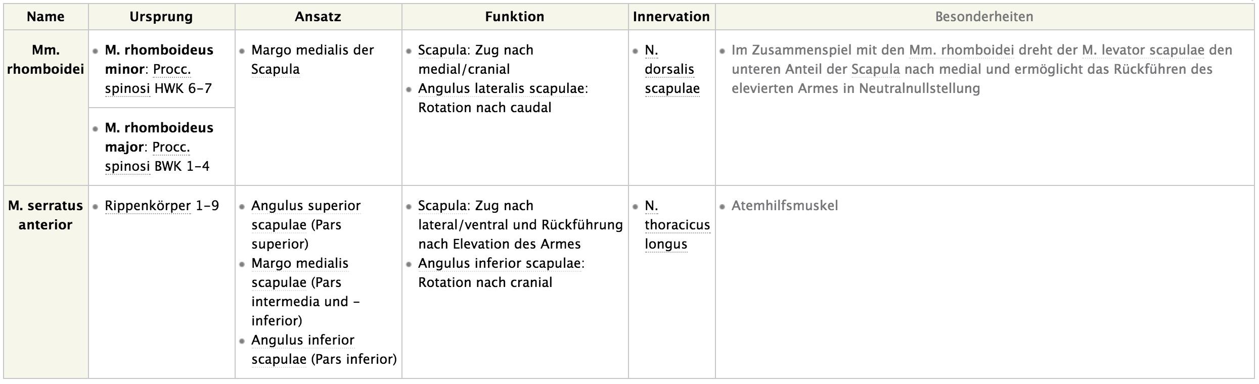Schräge Muskelschlinge des Schultergürtels | Anatomie: obere ...