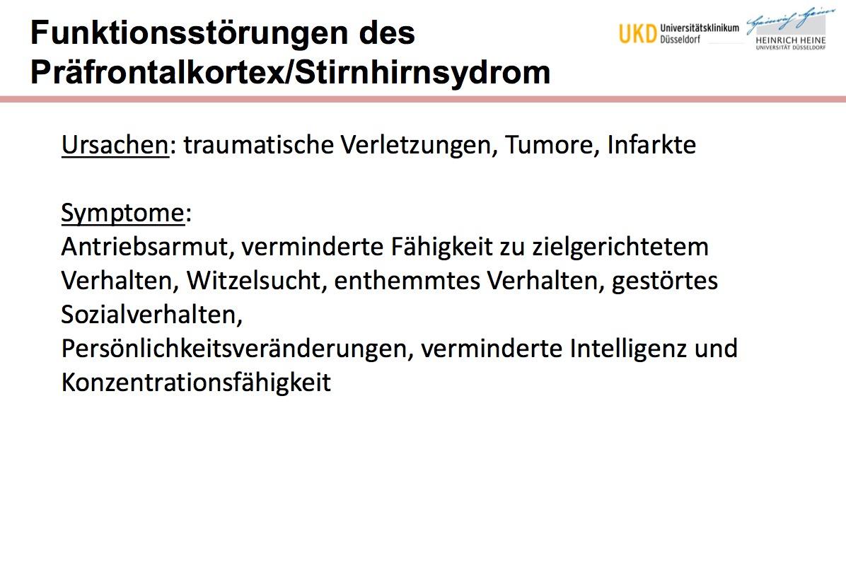 Funktionsstörungen des Präfrontalkortex/Stirnhirnsyd ...